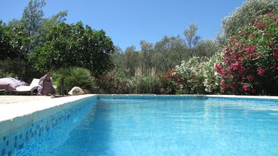 Photo for House 10/12 pers Pool. Porto-Vecchio Dream beaches on foot or 5 minutes by car