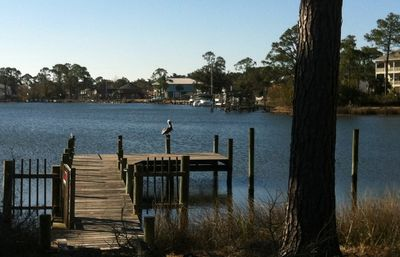 Photo for Pelican's Perch - Waterfront w Dock & Spa - 1 Mile to NAS & Corry Station