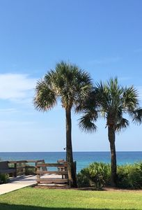 Photo for Palms A1: Best Prices to Be Ground Level Directly  on the Beach