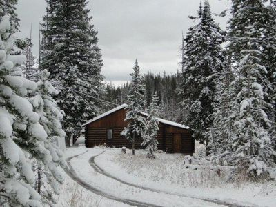 Photo for **ONLY AVAILABLE 4 WEEKS A YEAR**  Tucked away in the forest w wildlife galore
