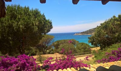 Photo for 🏖Enjoy South Sardinia☀️Book now & save🌅2weeks save 10% 🌺2 min walking to the 🏖