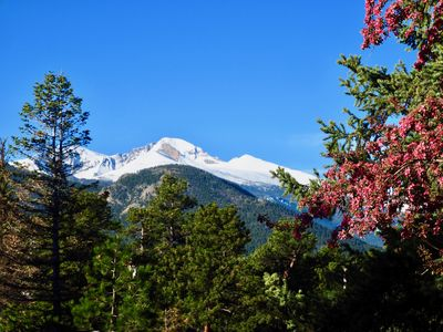 Photo for WALK TO DOWNTOWN 7 MIN.*LONGS PEAK VIEW*PATIO OASIS*4 MINUTE DRIVE TO RMNP