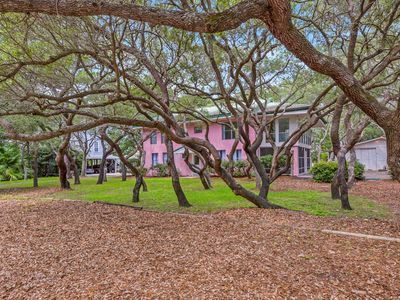 Photo for Heaven on Earth! Lake front Grayton Beach Home. Steps to Beach Access!