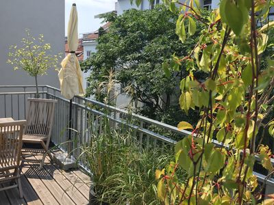 Photo for sunny and central apartment with terrace