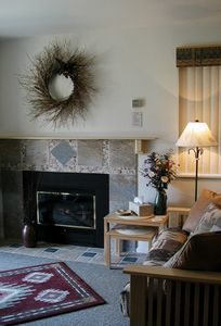 Cozy fireplace that heats the living room