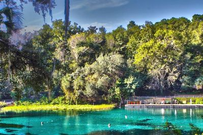 RiverView Lounge Rainbow River Swimming Hole