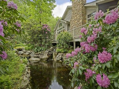 Blooming rhododendron bushes and a placid pond
