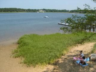 Private BEACH with Shade Tree!
