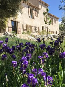 Photo for Mas in Provence with exceptional views of the Luberon