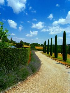 Photo for Porcilaia Tuscany luxury semi-detached house w shared pool in Siena countryside