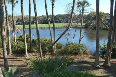 Gorgeous view from the backporch of lagoon and golf course. Very private view.