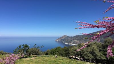 Photo for 6BR House Vacation Rental in Canari, Corse