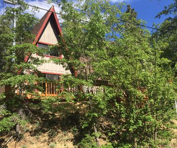 Photo for 100 Steps to Bear Mountain! Skiier's dream. Cozy 2 Level Mountain Cabin