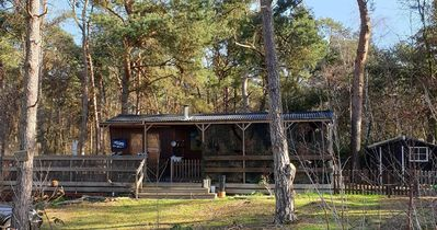Photo for Holiday house Lattrop Breklenkamp for 2 - 4 persons with 2 bedrooms - Holiday house