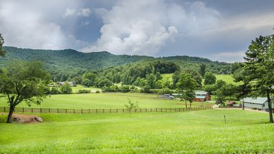"""Photo for Angel Cove II - Overlooking """"The Farm"""""""
