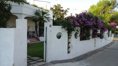 Photo for Villa 8 beds 100 meters from the sea of Salento