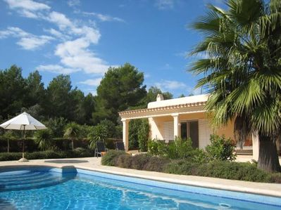 Swimming Pool with Terrace & pine trees behind