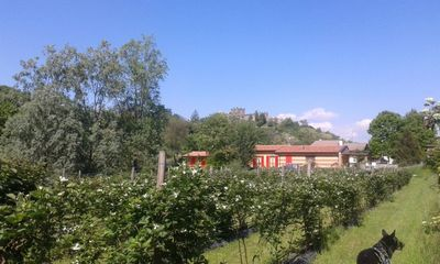 Photo for B & B Agriturismo Lago d`Iseo and Franciacorta in the countryside- Mora