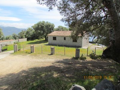 Photo for In an olive grove of seven hectares