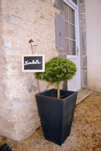 """Photo for Gîte """"MIRABELLE"""" in the countryside with swimming pool"""