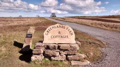 Welcome to Greenlands Farm
