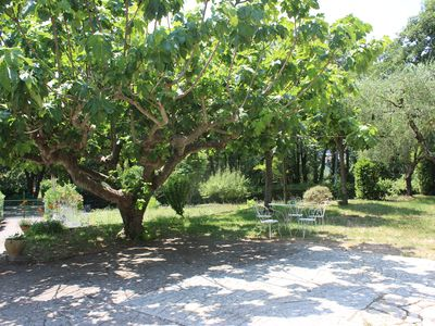 Photo for Quiet garden level on the French Riviera