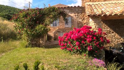 Photo for Gîte with heated pool large farmhouse of the 18th Alpes de Haute Provence