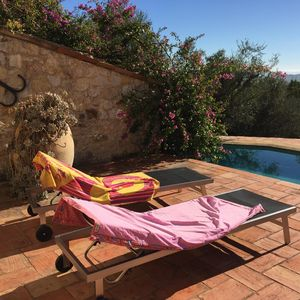 Photo for Traditional Provencal farmhouse with pool set in olive grove