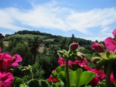 Photo for B & B Carboni nature and relaxation