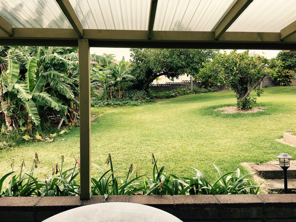 pahala house 2 bd 1 ba fruit trees in back yard patio