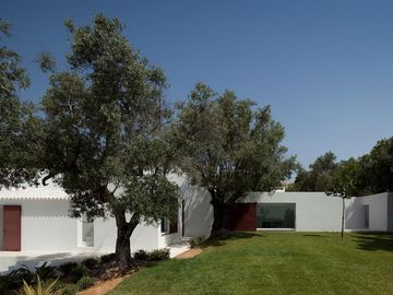 ARCHITECT DESIGNED DREAM HOUSE SURROUNDED BY HUNDREDS OF OLIVE AND ALMOND TREES