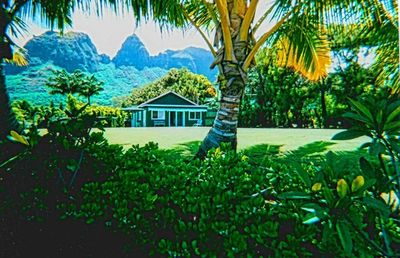 Photo for 1BR Cottage Vacation Rental in Anahola, Hawaii