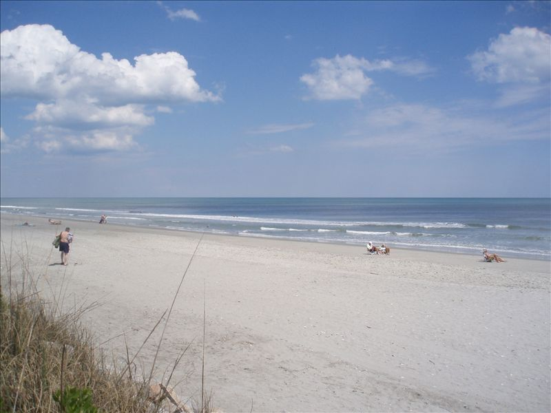 garden city beach. Property Image#7 South Carolina Garden City Beach I
