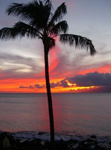 Breathtaking Sunsets!  Photo was taken from the condo's second level lanai.