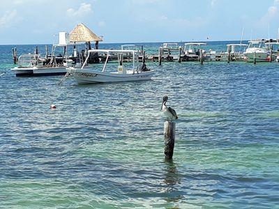 Photo for Res. Puerto Marino is located in Puerto Morelos, a little village between Cancún