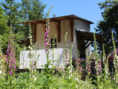 Photo for Architect Designed Cabin in the Woods, Pender Island