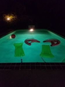 Anyone up for a night swim?  April - October?
