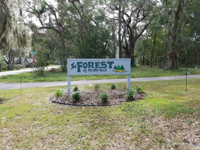 Photo for HITS Ocala Home in Beautiful Forest of Golden Hills