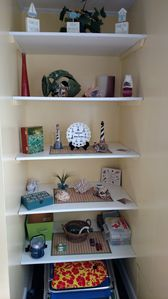 Living room bookcase.