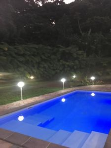Photo for Beautiful T3 in tropical forest with swimming pool