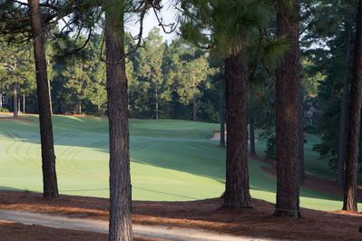 View from the back of the property overlooking the 4th fairway of #6.