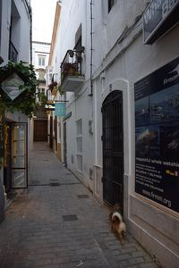 Photo for Andalusian patio house in the center of the old town of Tarifa