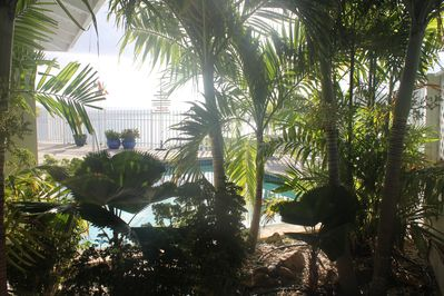 Oasis by the pool