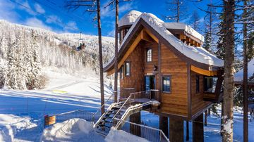 Welcome to the World's First Slopeside Ski-in/Ski-out Luxury Treehouse!