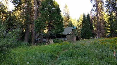 Photo for Yosemite Luxury Cabin 2 MILES from South Gate Park Entrance