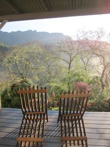 Photo for Calistoga - Spectacular 40-acre Wine Country Retreat
