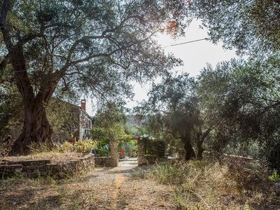 Photo for HOUSE ΜΑΔΙΑΝΟΣ - In the middle of the olive forest