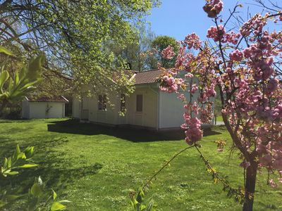 Front of house with cherry blossom