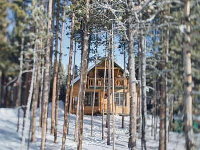 Quiet, cosy and private cabin nestled amongst the towering pines
