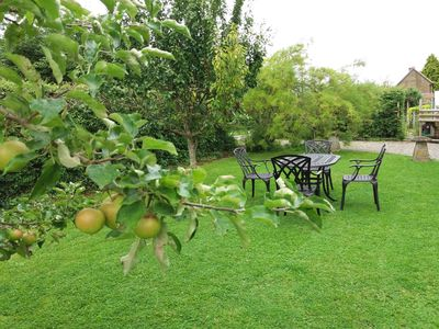 Plum and apple tree complete the setting in this lovely secure garden.